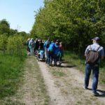 Spaziergang Schwanheimer Dünen 30-4-2017Spaziergang Schwanheimer Dünen 30-4-2017